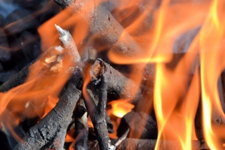 firestarter: Fire Stock Photo