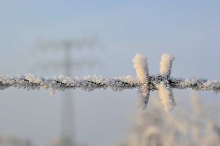 Barbed wire in cold weather in winter Stock Photo
