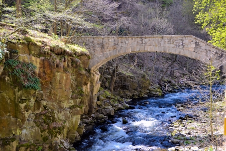 an old bridge in the valley of the river Bode, the Harz National Park photo