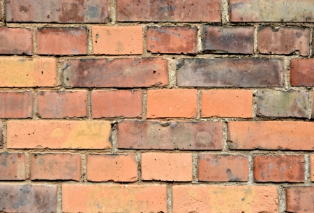 a wall made of bricks Stock Photo - 19048579