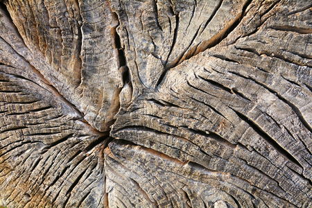 tearing down: Weathered Wood Stock Photo