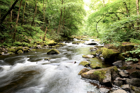 The Wild River Bode in the Harz national park