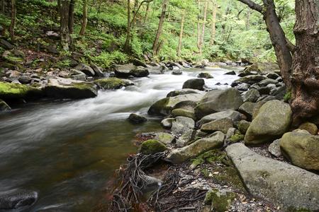 de romantische bergbeek Bode in het Nationaal Park Harz