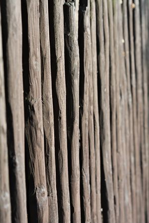demarcation: garden fence on private land