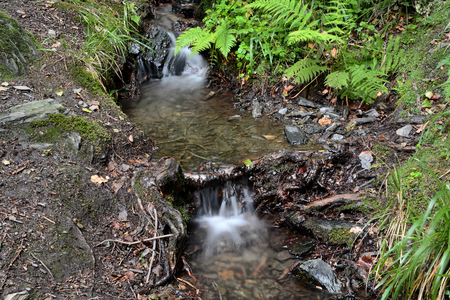 springwater: spring water on a hiking trail in the Harz National Park Stock Photo