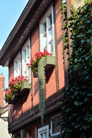 renovate old building facade: Facade of a half-timbered house in the Old Town of Quedlinburg