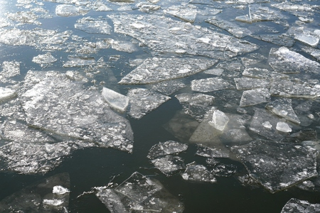 ice floes: Ice floes on the River Elbe at Magdeburg