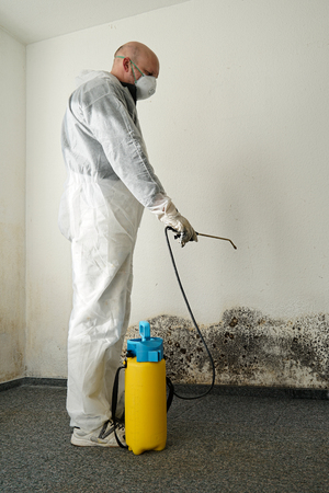 remediation: specialist in Combating mold in an apartment Stock Photo