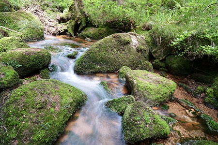 brocken: Mountain stream at the foot of the Brocken in the Harz National Park Stock Photo