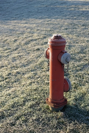 borne fontaine: Hydrant on a meadow in Magdeburg
