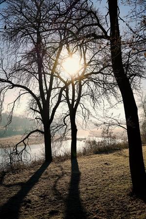 Sunrise in a park in Magdeburg in Germany Stock Photo