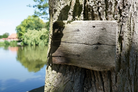 Wooden signboard on an old tree