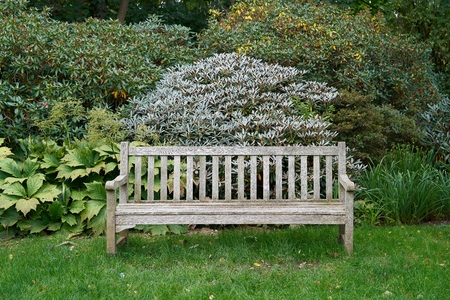 seating area: Wooden park bench in a public park in Magdeburg