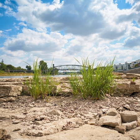 Dried out river bed of the River Elbe near Magdeburg with the Cathedral Rock Banco de Imagens