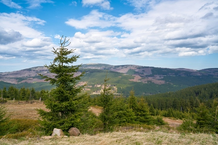 View from the Wurmberg to the Harz National Park. In the background is the summit of the chunks Reklamní fotografie
