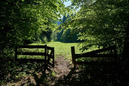 Gate and meadow on a hiking trail near Friedrichsroda in the Thuringian Forest 免版税图像
