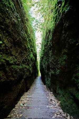 Hiking trail through the Dragon Gorge at the Thuringian Forest near Eisenach