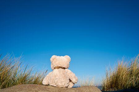 Sad teddy bear with wanderlust on the beach of the Baltic Sea near Warnemünde in Germany Stockfoto