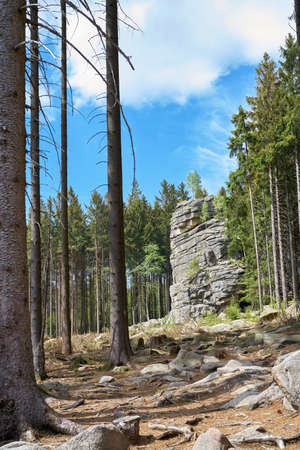 Feuersteinklippe near Schierke in the Harz National Park in Germany Stock fotó