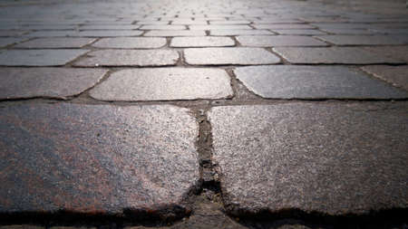 Cobblestone pavement of a street in Magdeburg with backlight Banque d'images