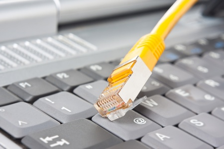 wlan: Close-up of a network cable in front of a keyboard Stock Photo