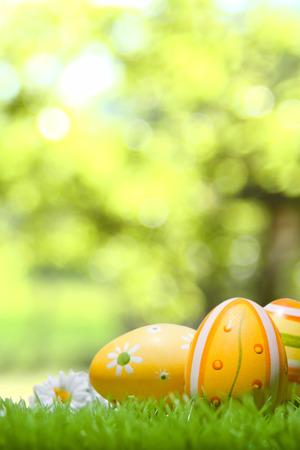 Easter eggs on a green meadow, bokeh in the background Reklamní fotografie