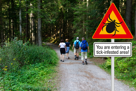 Warning sign beware of ticks in infested area in the green woods with hikers Stockfoto