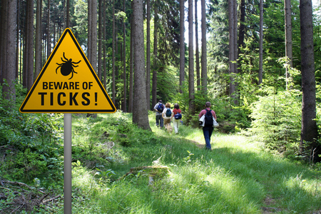 Warning sign beware of ticks in infested area in the green forest with walkers