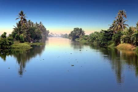 panoramic view backwaters while sunrise, Kerala, India