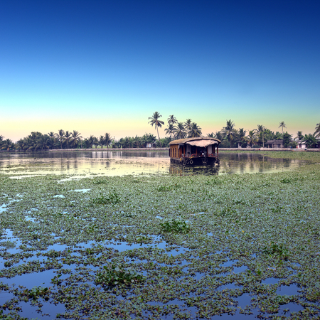 alleppey: sunrise at backwaters landscape with swaying coconut trees and traditional house boats in Alleppey, Kerala, India Stock Photo