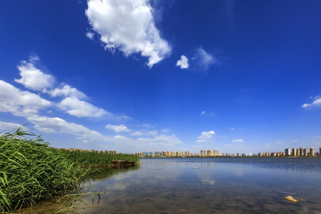The summer of Jinyang Lake