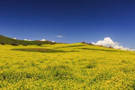Natural scenery of Menyuan Hui Autonomous County, Haibei Tibetan Autonomous Prefecture, Qinghai, China Stockfoto - 128802506