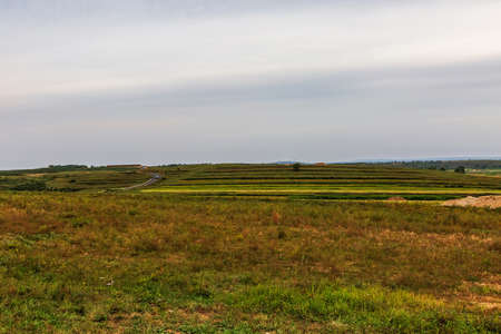 Zhangbei Bashang Grassland, Grassland Tianlu Natural Scenery 版權商用圖片