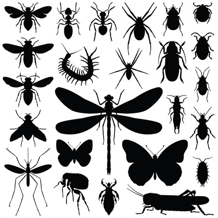 Insect icon collection - vector silhouette