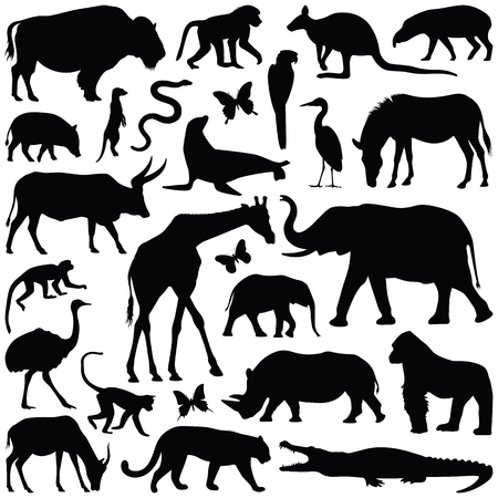 Zoo animals collection - vector silhouette Illustration