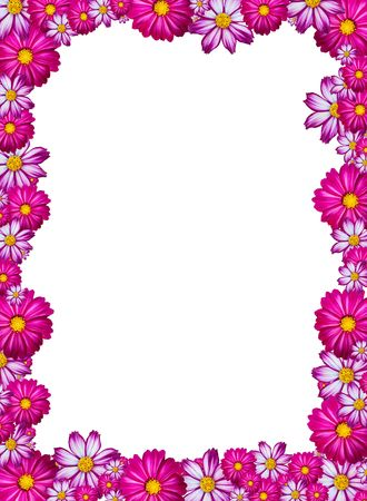 Pink, white and purple flower frame with white background Stock Photo