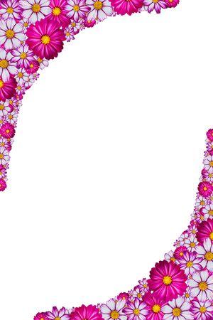 Marco de flores de color rosado, blanco y morado con fondo blanco  Foto de archivo - 6232185