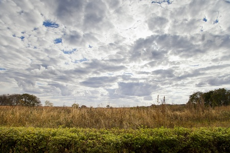 zambian: Zambian landscape with white and grey clouds overhead