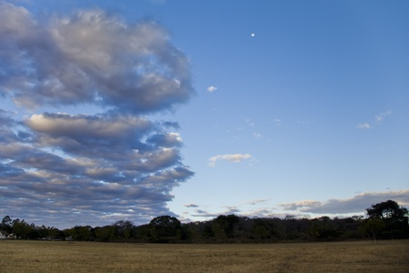 zambian: Zambian landscape with treelline on horizon, clouds overhead and the moon in the sky Stock Photo