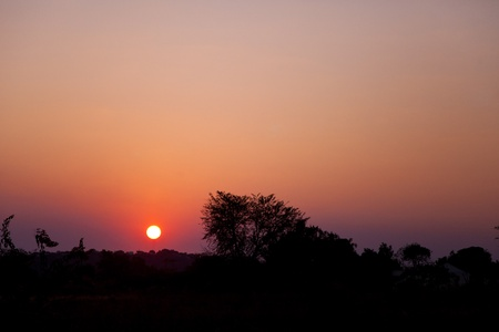 Sunrise over Zambia. Silhouette of treeline and horizon with sun just cresting over horizon. Stock Photo - 10715422