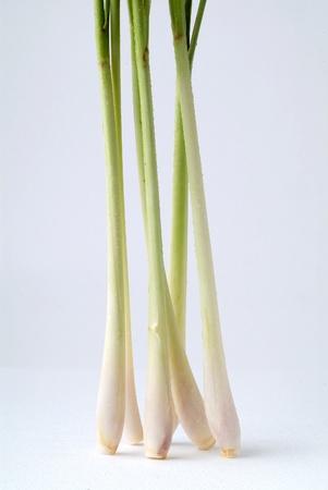 lemongrass: lemon grass