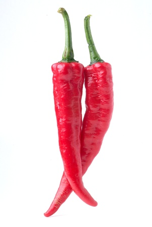 Red hot chilli photo