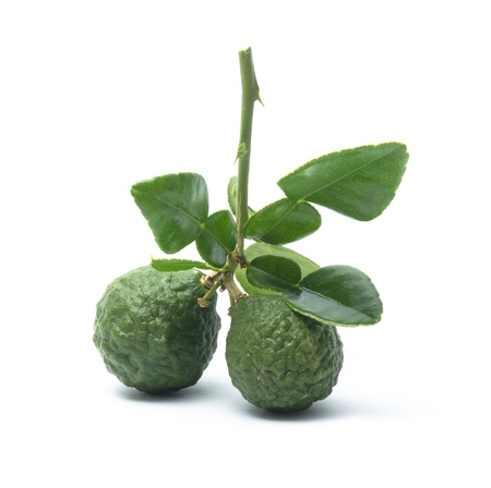 Lime on a white background photo