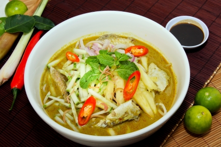 Laksa is traditional food in Malaysia Stock Photo - 13202670