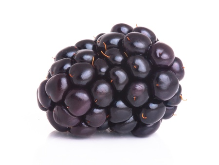blackberry isolated on a white background Stock Photo - 13529000