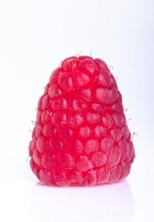 raspberry isolated on white background Stock Photo - 13529181