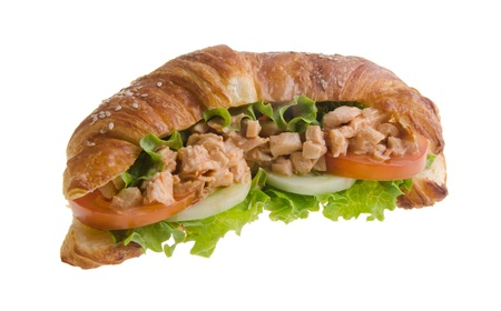 sandwich, croissant sandwich, fast food for breakfast or lunch  Stock Photo - 14380421