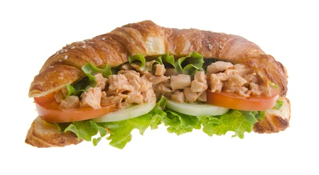 sandwich, croissant sandwich, fast food for breakfast or lunch Stock Photo - 14380461