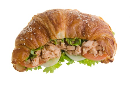 sandwich, croissant sandwich, fast food for breakfast or lunch  Stock Photo - 14380467