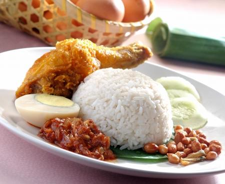 Lemak Nasi tradicional plato de arroz malaysian picante